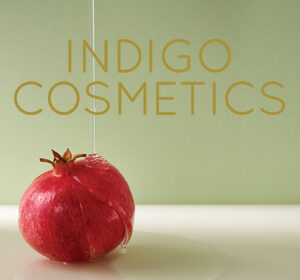 Previous<span>Indigo Cosmetics Identity</span><i>→</i>